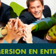 formation emploi insertion professionnelle nouvelle caledonie